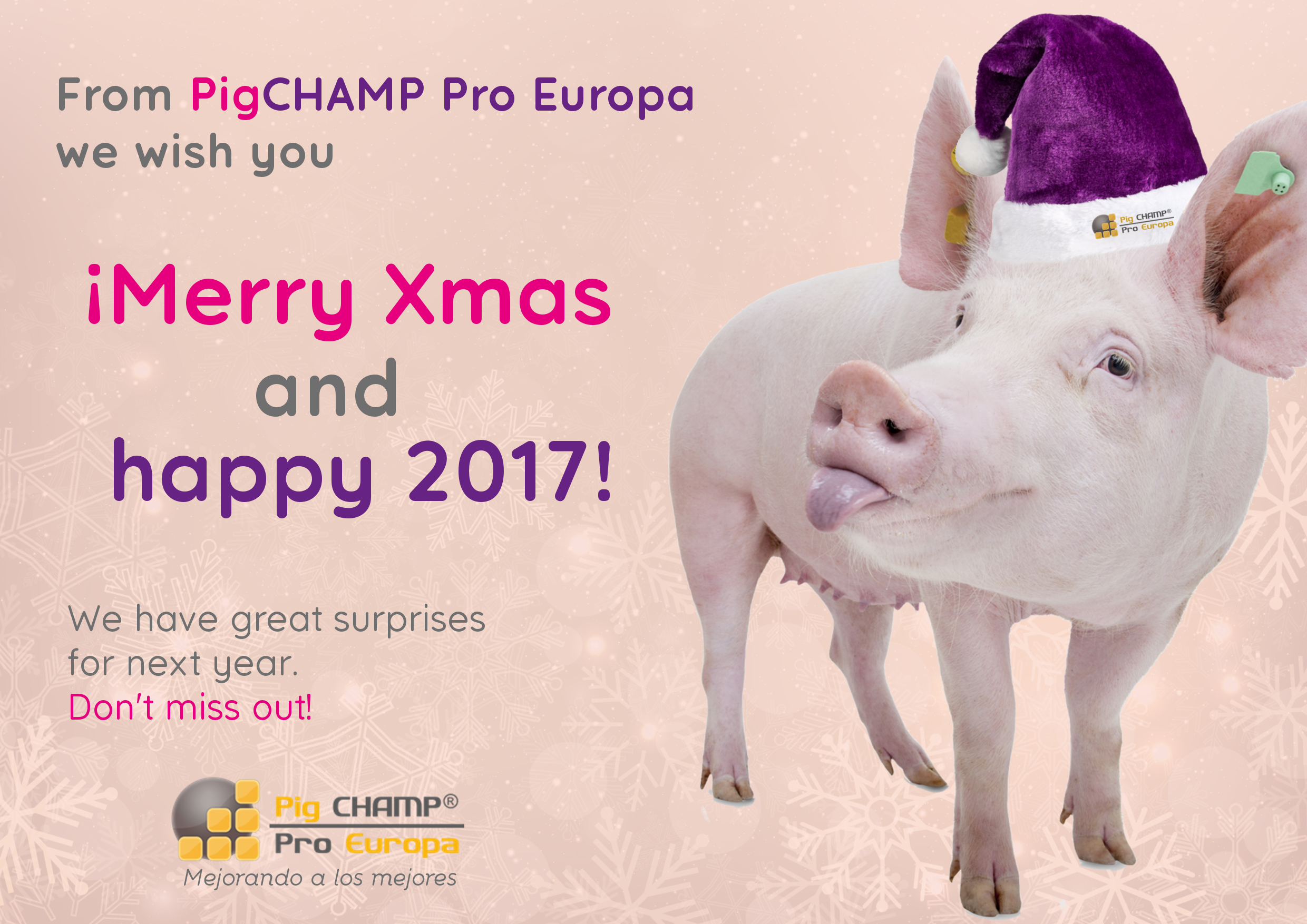 Merry christmas and happy 2017!